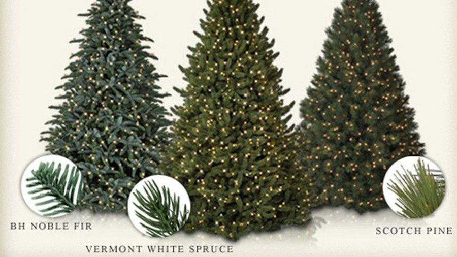 Balsam Hill Christmas Trees.No Vc Under The Tree Inside A Revolutionary Christmas