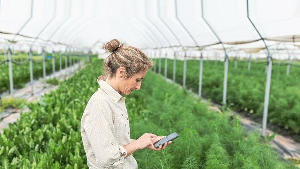 How digital innovation is transforming Indian agriculture