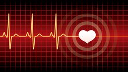 The heartbeat of modern marketing: Data activation and personalization