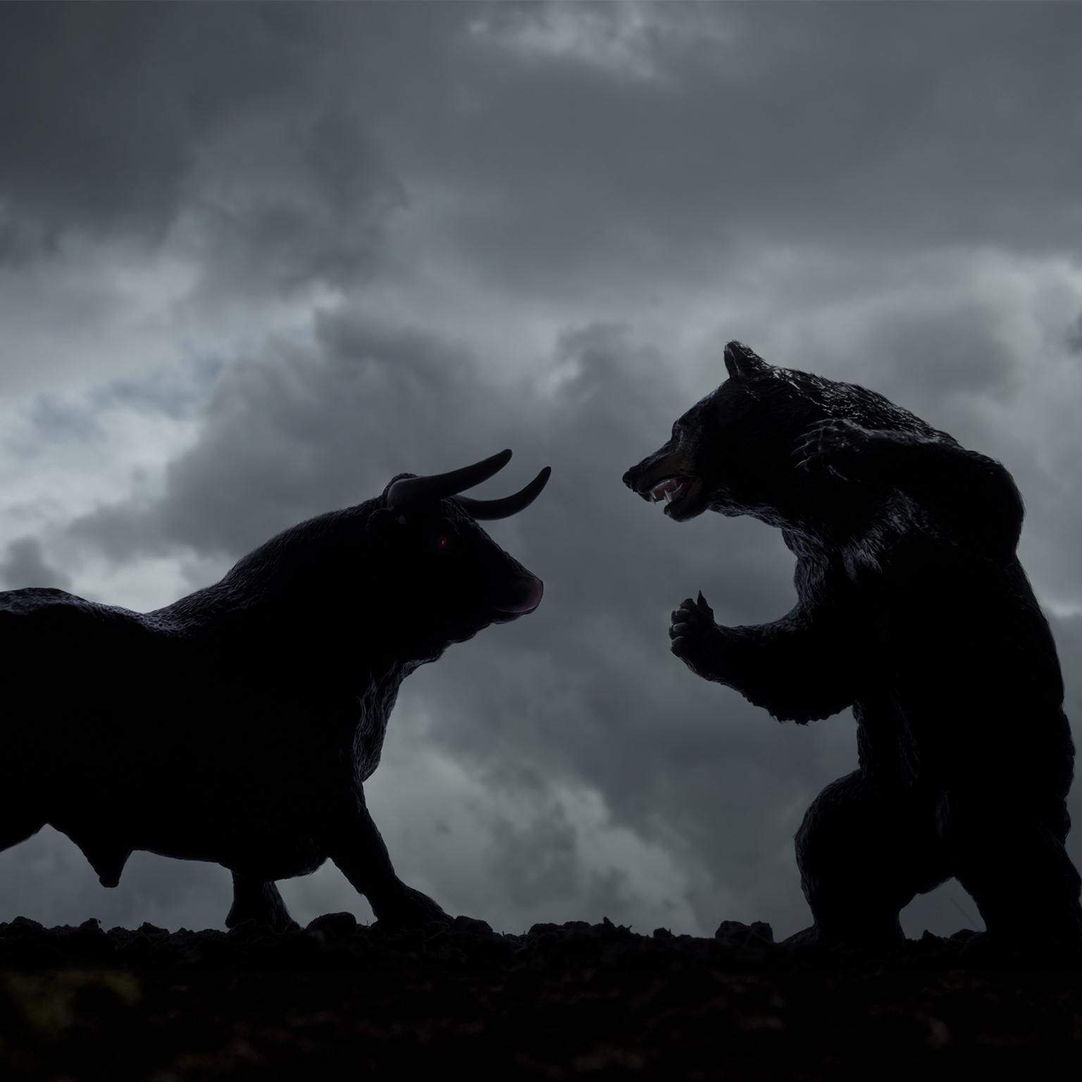 Do fundamentals--or emotions--drive the stock market? | McKinsey