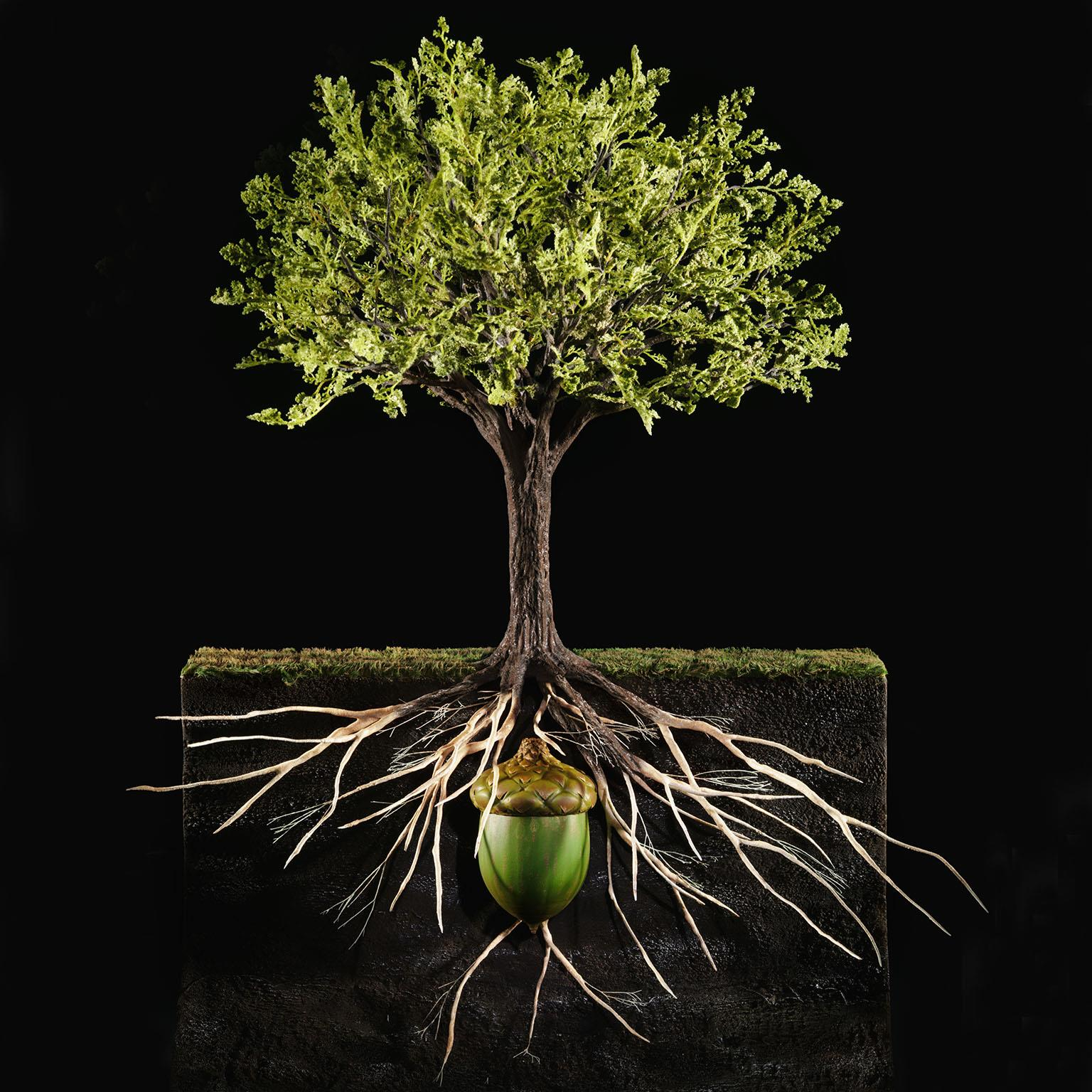 Finance Tree: The Value Premium Of Organic Growth
