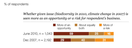 Environmental issues: opportunity or risk?