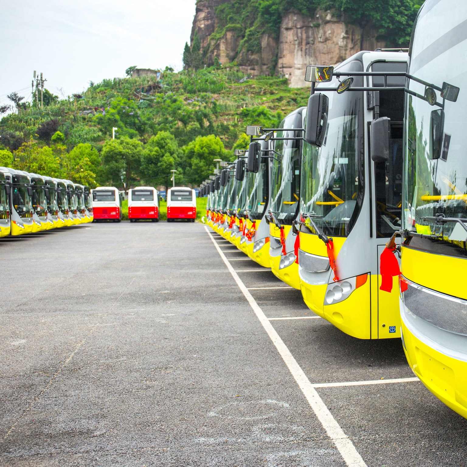 Fast Transit Why Urban E Buses Lead Electric Vehicle Growth
