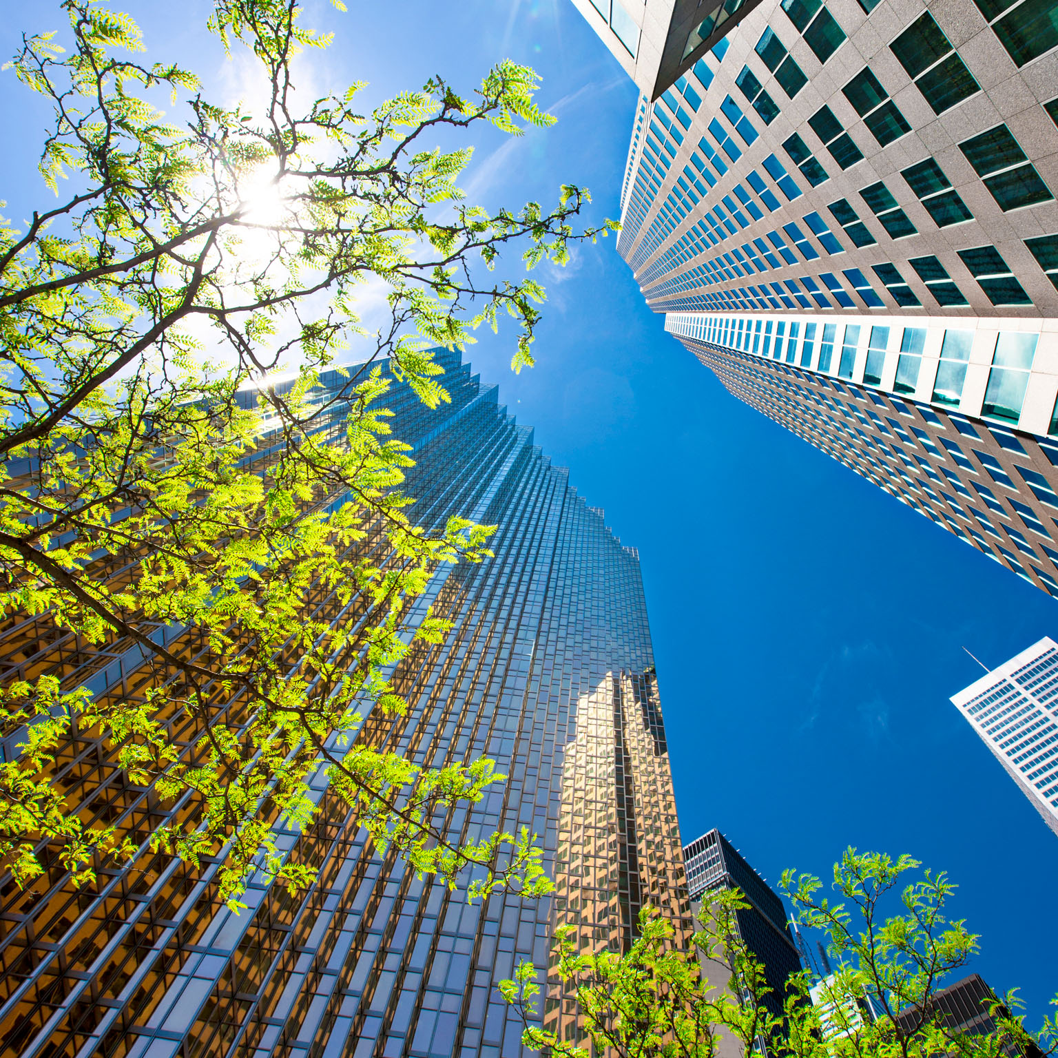 From 'why' to 'why not': Sustainable investing as the new